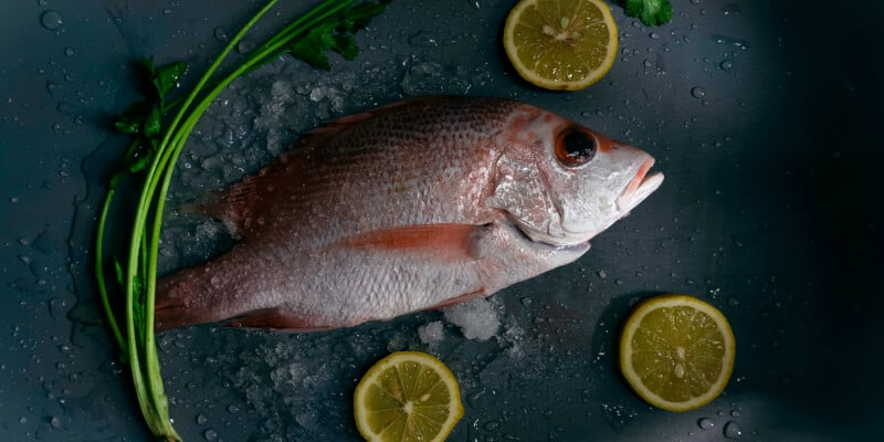 snapper on a plate