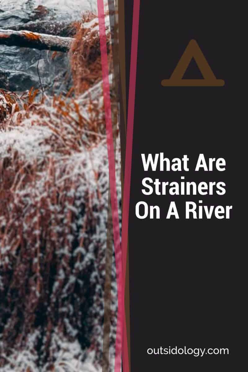 What Are Strainers On A River (1)
